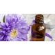 Ateliers Naturopathie : «fleurs de Bach 2 »